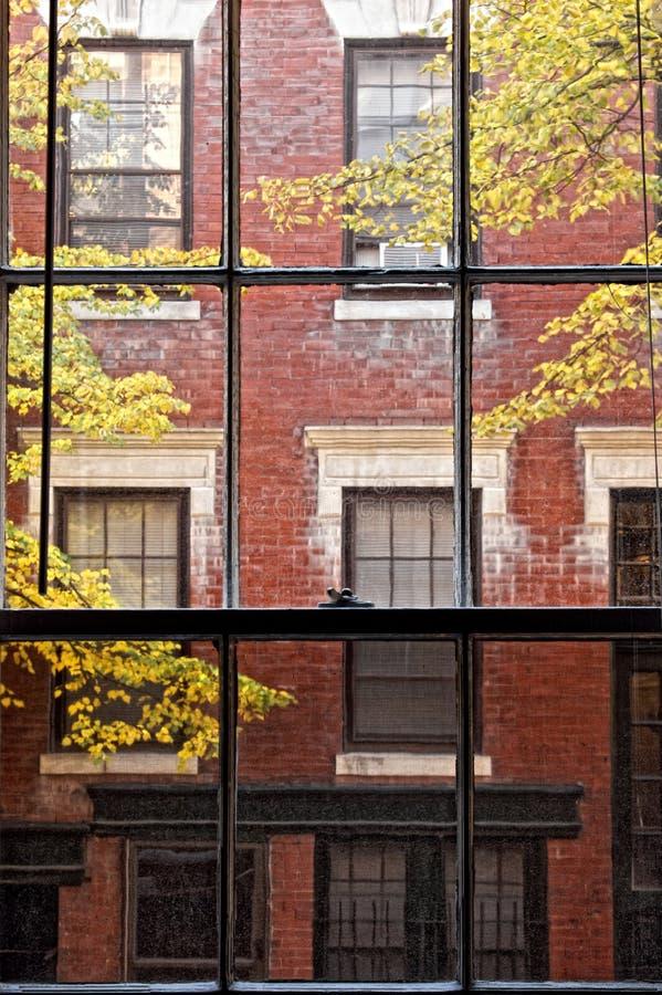 Durch das Fenster stockfotos