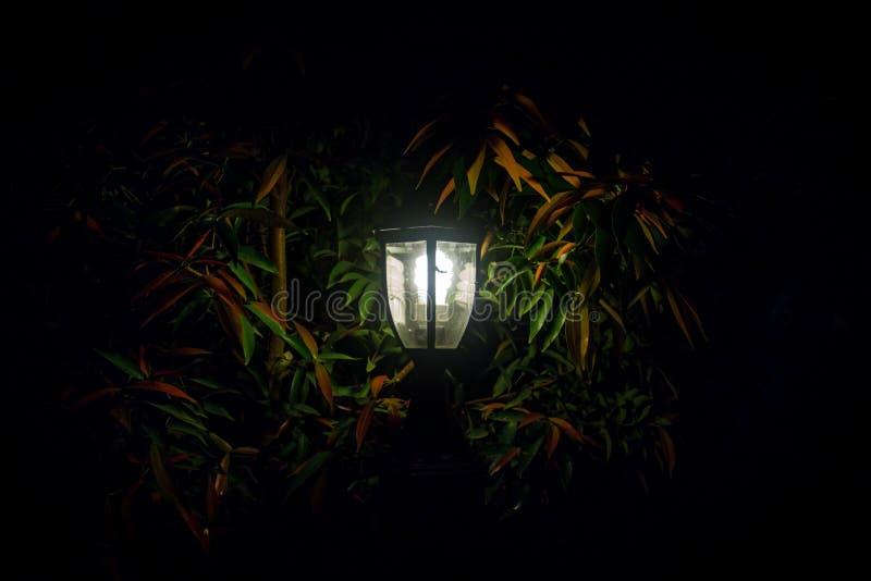 Durch das Glühen der Garten-Laterne stockfoto