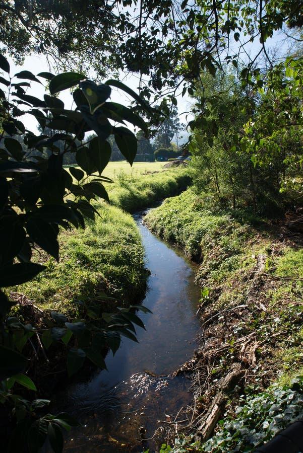 Durch die Flussseite stockbilder