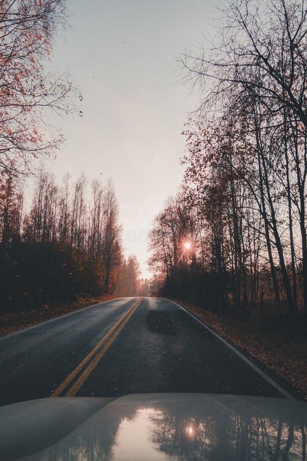 Durch Landschaft auf einer schmalen Straße mit der emporragenden Sonne fahren, Finnland lizenzfreies stockbild