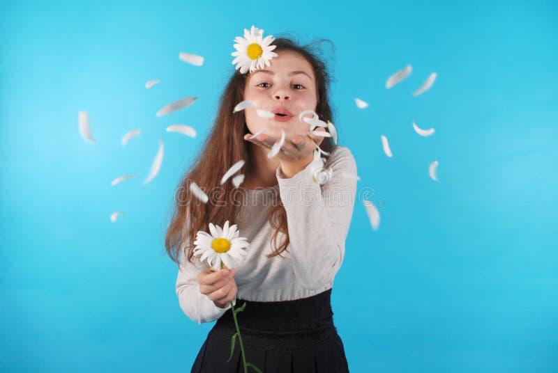 Durchbrennende wegkamillenblumenblätter des Mädchens lizenzfreies stockbild