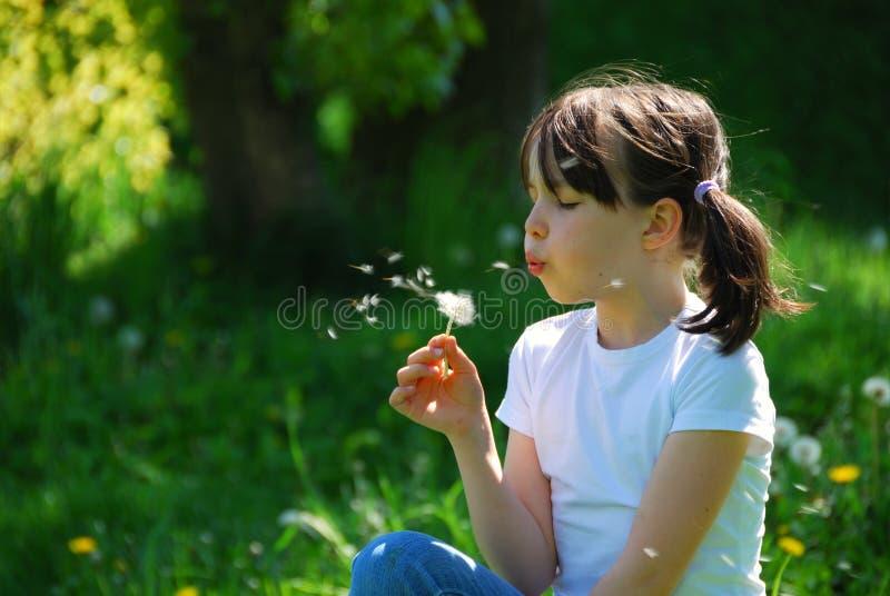 Durchbrennenlöwenzahn des Mädchens lizenzfreies stockfoto