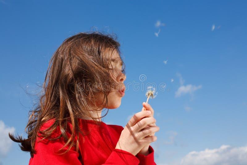 Durchbrennenlöwenzahn des Mädchens im Freien lizenzfreie stockfotos
