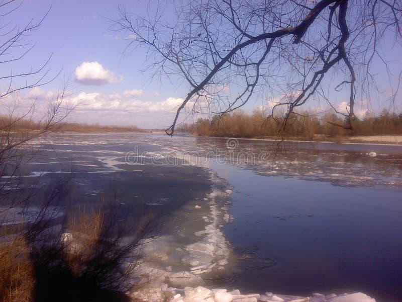 Durcheinander auf dem Fluss lizenzfreie stockfotografie