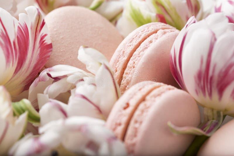 Durcissez le macaron ou le macaron et les tulipes, couleurs en pastel, foyer mou photo libre de droits