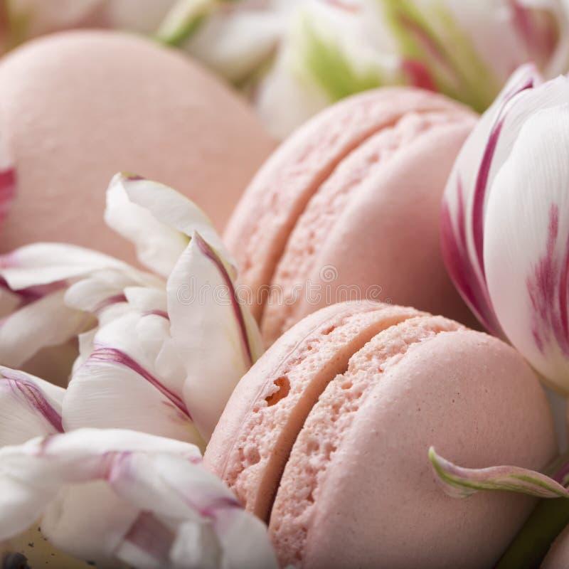 Durcissez le macaron ou le macaron et les tulipes, couleurs en pastel, foyer mou photographie stock libre de droits