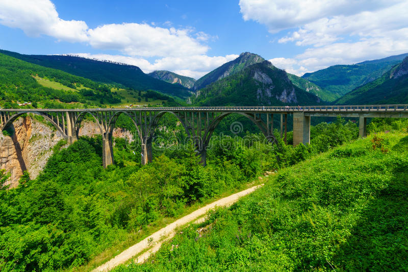 Durdevica塔拉桥梁 库存图片