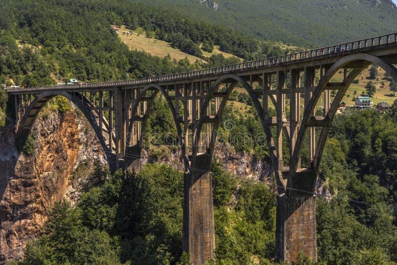 Durdevica Tara Bridge située aux carrefours entre Mojkovac, Zabljak et Pljevlja, Tara Canyon, Monténégro photo stock