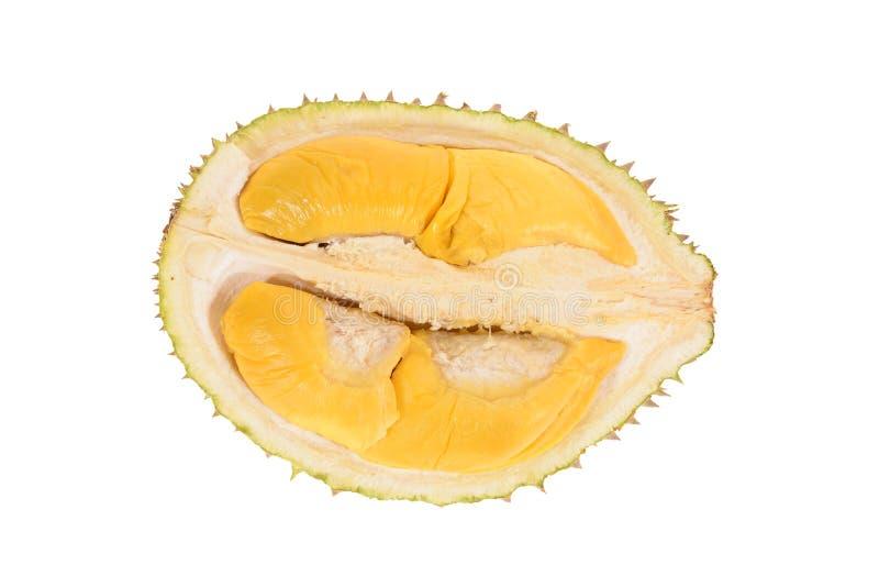 durian καρπός τροπικός στοκ φωτογραφίες