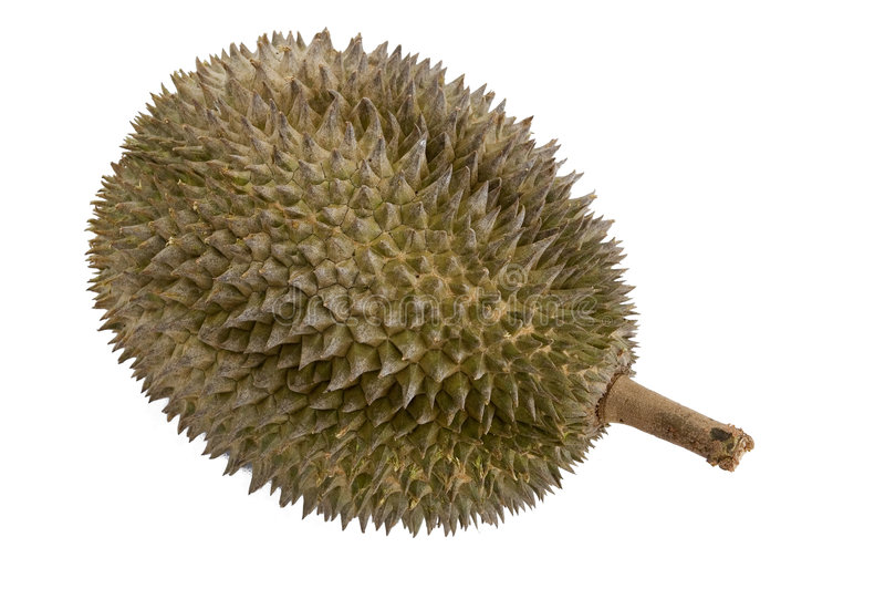 Durian 2 stockfotos