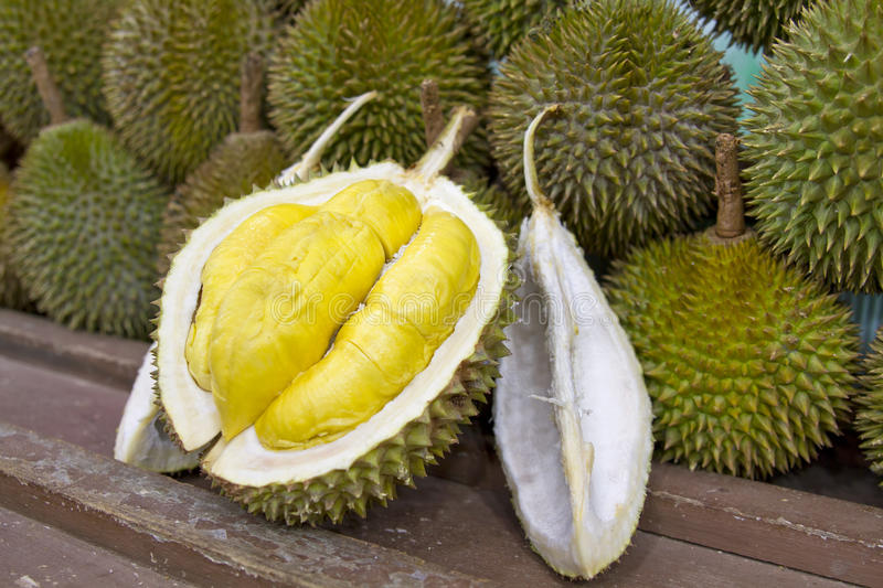 Durian 2 images stock