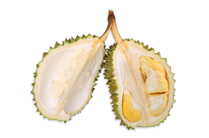 Download Durian stock image. Image of background, unpleasant, green - 24340717