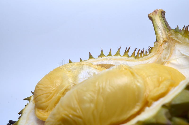 Download Durian stock photo. Image of jack, king, south, benefits - 28185410