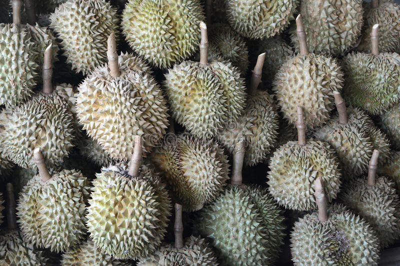 Durian stock foto