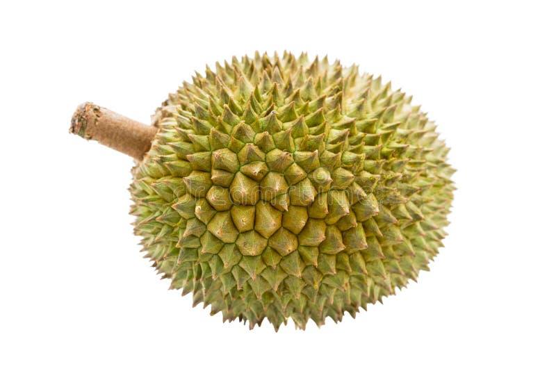 Durian stock foto