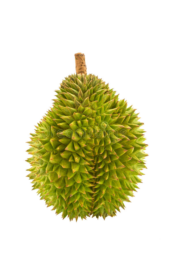 Durian royalty-vrije stock foto