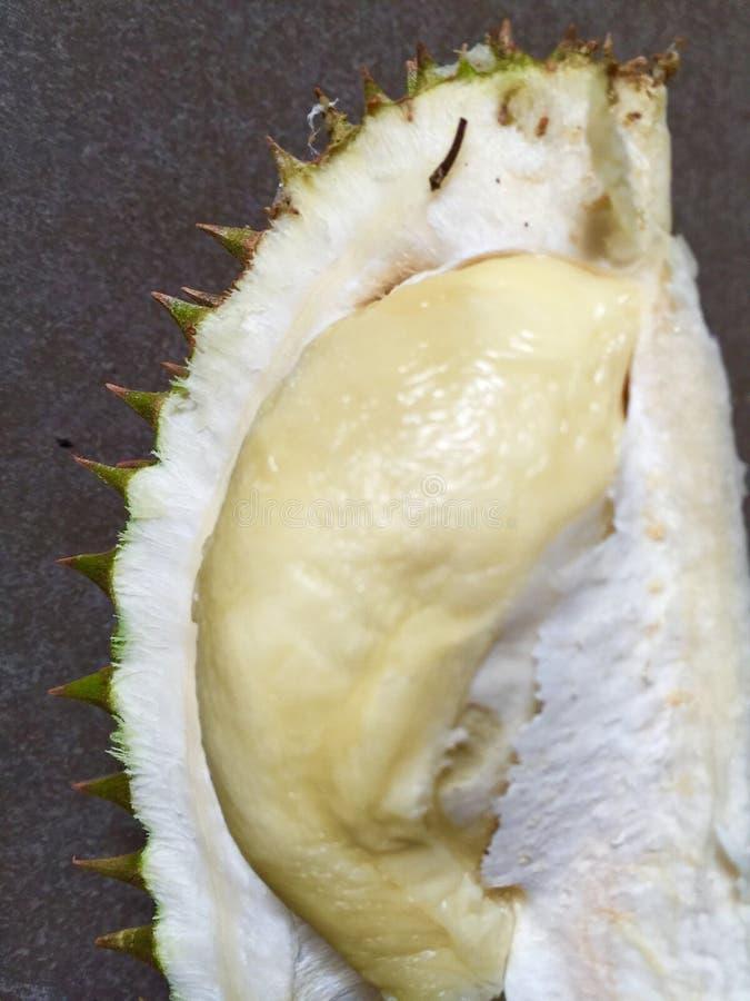 Durian, fotografia de stock royalty free