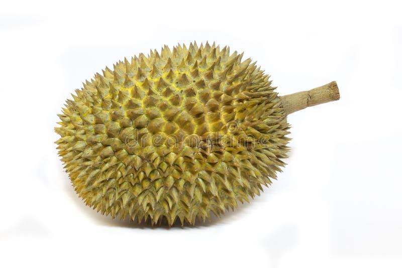 Download Durian aislado imagen de archivo. Imagen de dieta, sostenido - 41917177