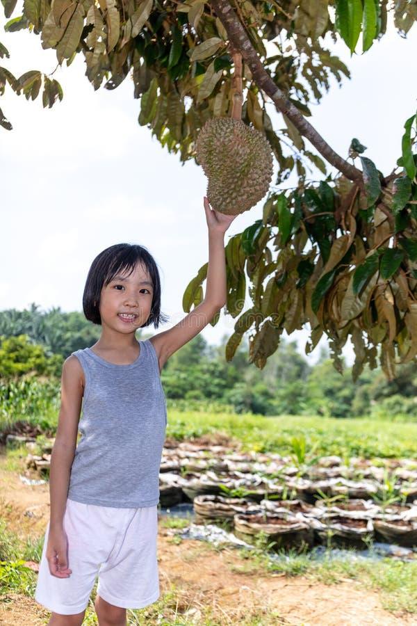 Durian cinese asiatico della tenuta della bambina sull'azienda agricola fotografia stock