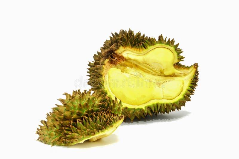 Durian d'isolement sur le fond blanc images libres de droits