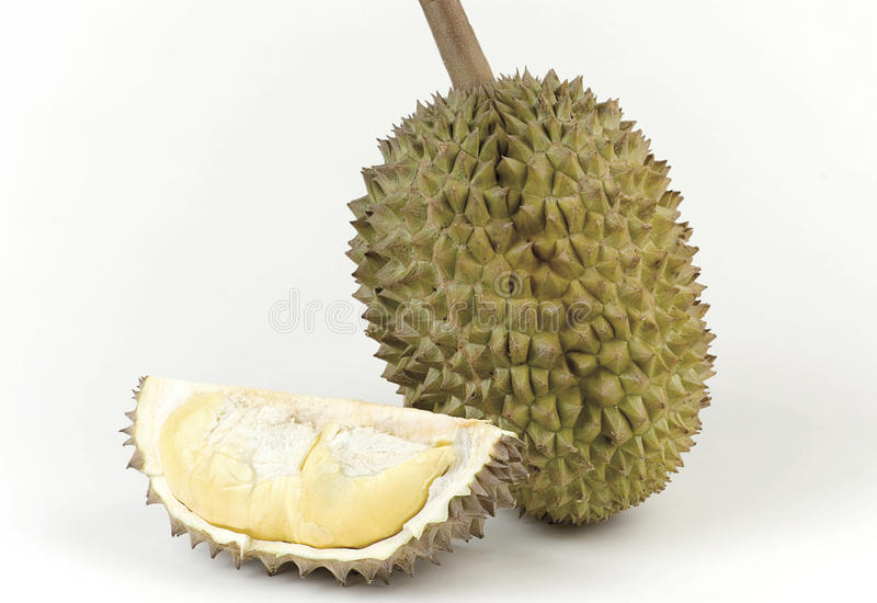 Durian der König der Frucht stockfotografie