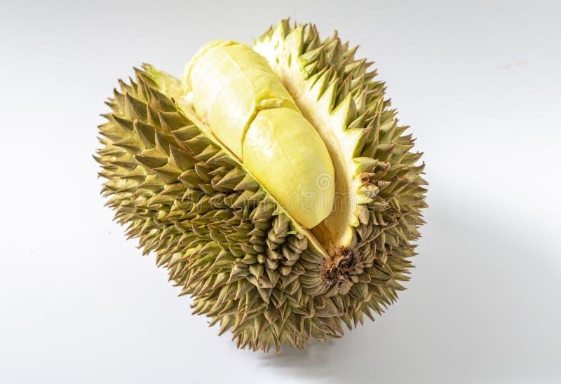 Durian frais sur le fond blanc Le roi des fruits thaïlandais Les fruits les plus smelliest et doux photos libres de droits