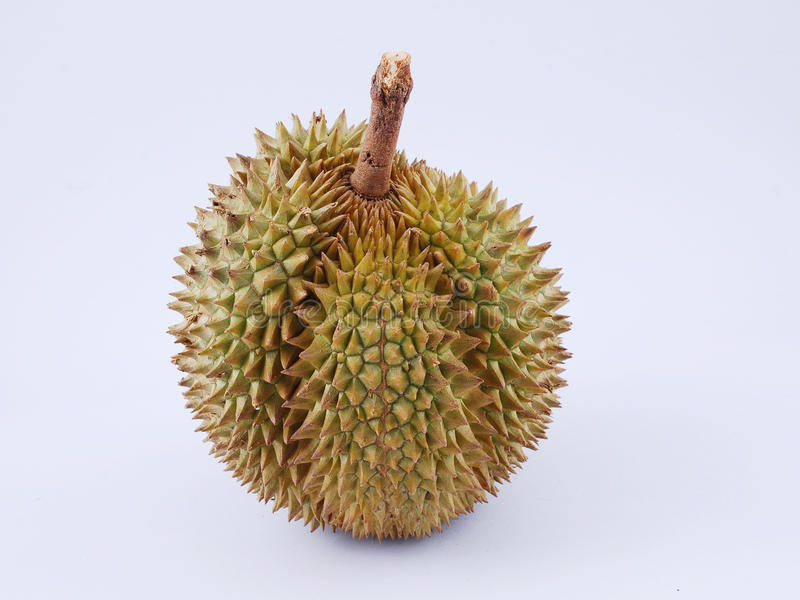 Durian Frucht Wirkung