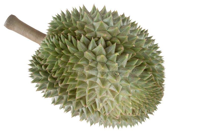 Durian is het populairste die fruit in Thailand op witte achtergrond wordt geïsoleerd stock fotografie