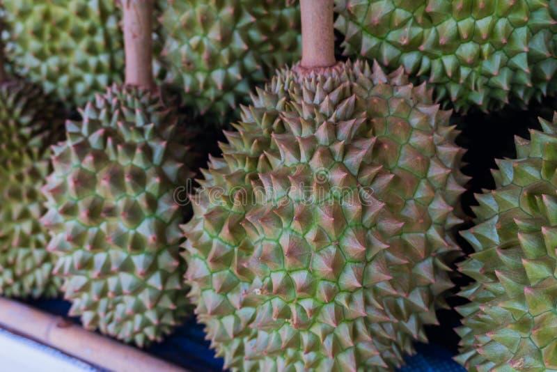 Durian il re dei frutti per vendita immagini stock libere da diritti