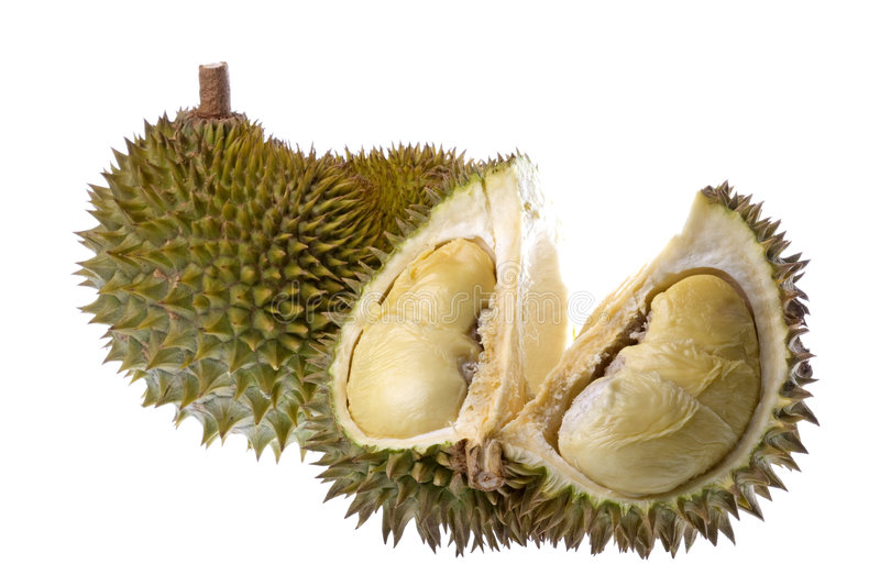 Durian Isolated. Isolated image of a Durian. the King of Fruits stock images