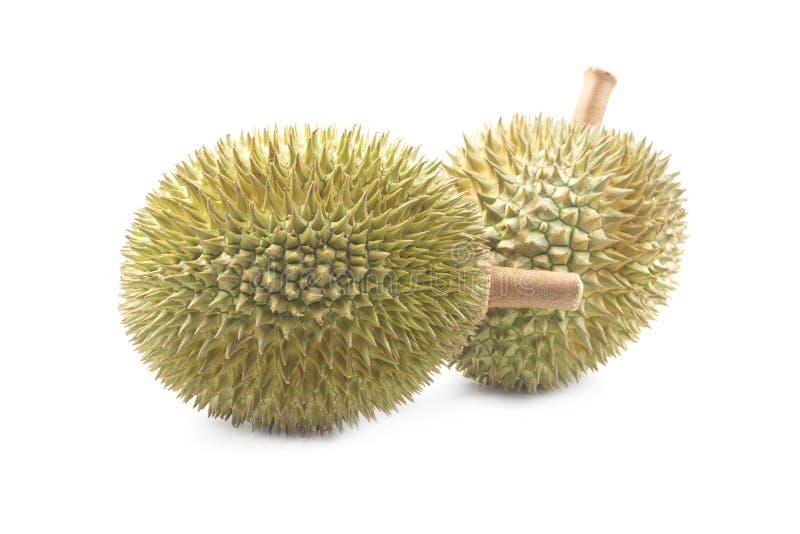 Durian isolato su priorità bassa bianca immagini stock libere da diritti