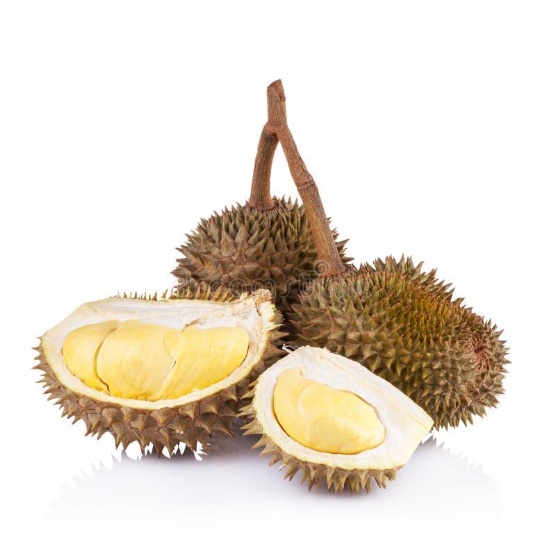 Download Durian Isolato Su Priorità Bassa Bianca Fotografia Stock - Immagine di sudorientale, alimento: 56877104