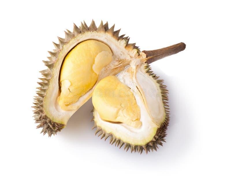 Download Durian Isolato Su Priorità Bassa Bianca Fotografia Stock - Immagine di sezione, verde: 56877406