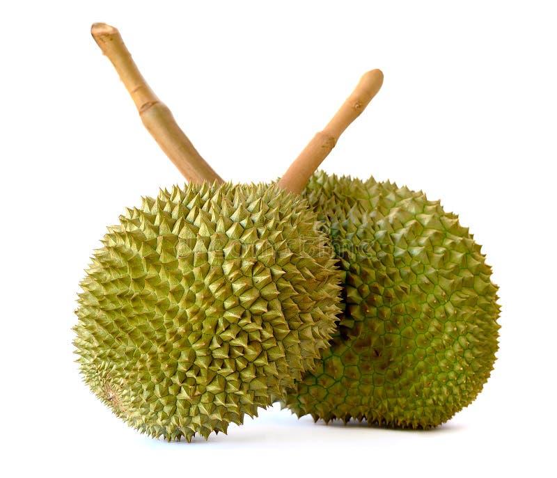 Download Durian Isolato Sui Precedenti Bianchi Immagine Stock - Immagine di squisito, grezzo: 55359149