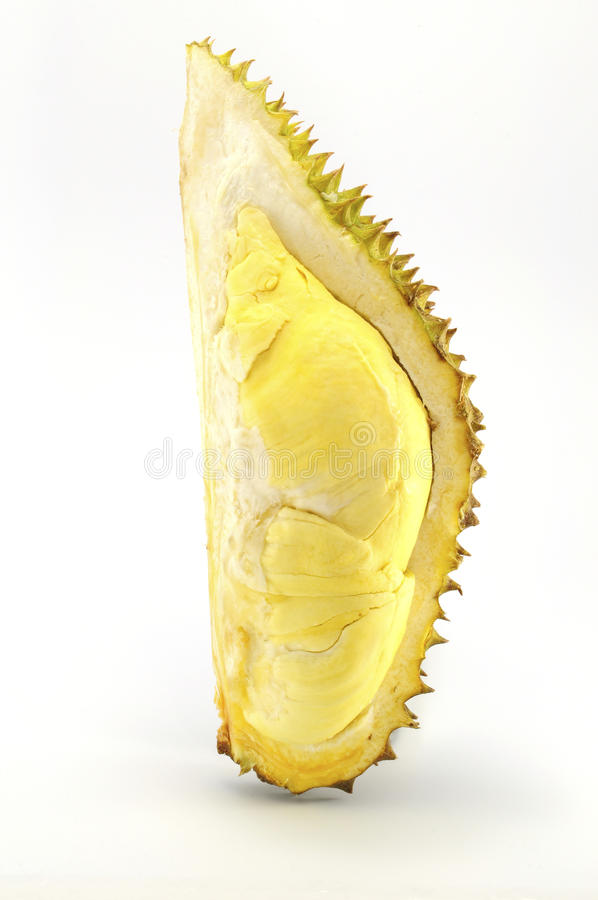 Download Durian, The King Of Fruit Of South East Asia Stock Photo - Image: 19727622