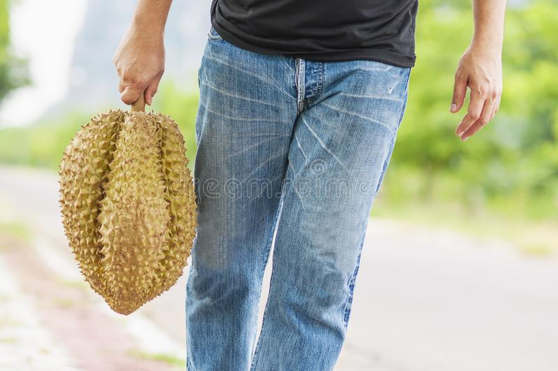Durian mûr d'apparence d'homme heureusement photographie stock