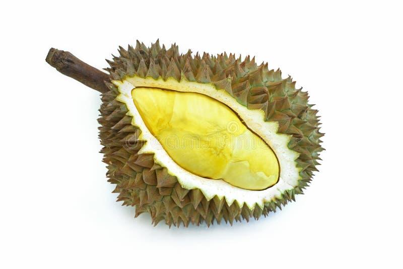 Durian mûr sur un fond blanc images stock