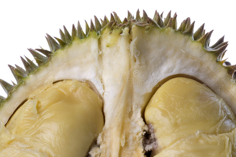 Durian Macro stock images