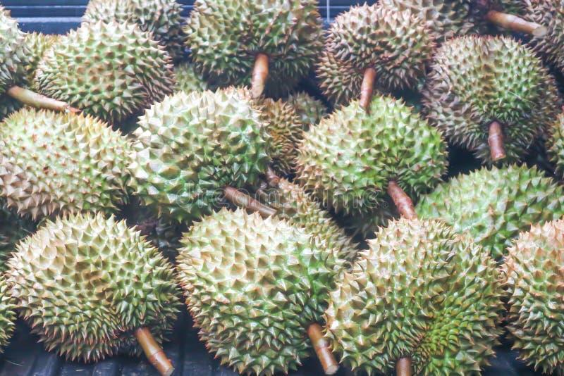 Durian o durian tailandés fotografía de archivo libre de regalías