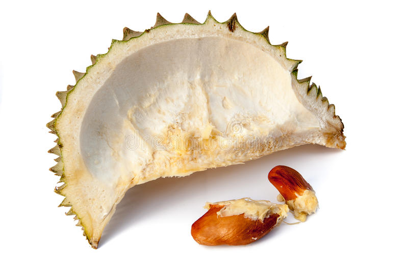 Download Durian is open the rind stock image. Image of smelly - 31724919