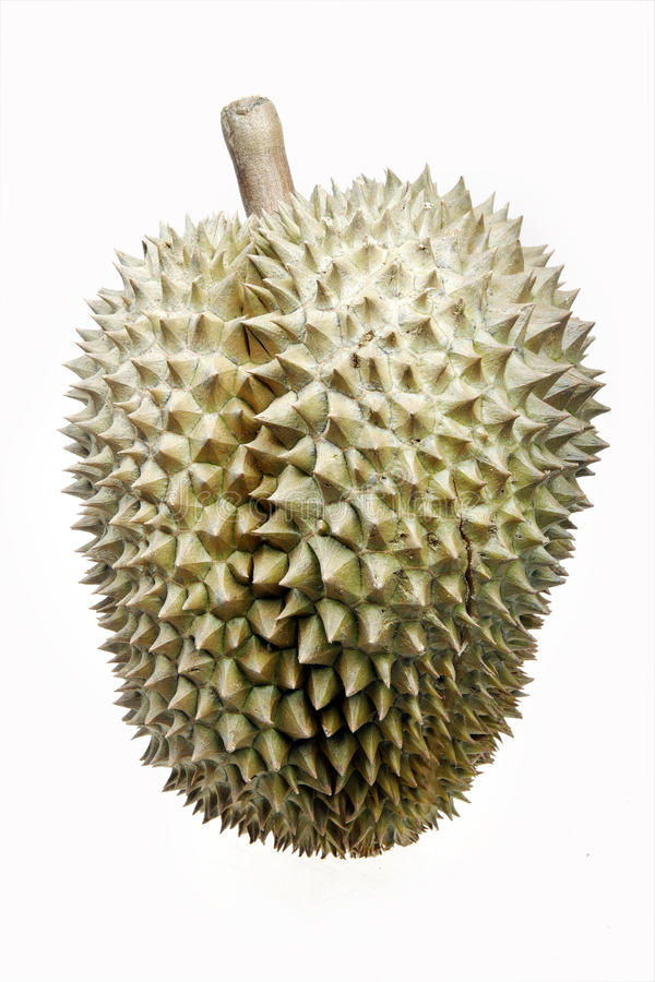 durian owoc fotografia stock