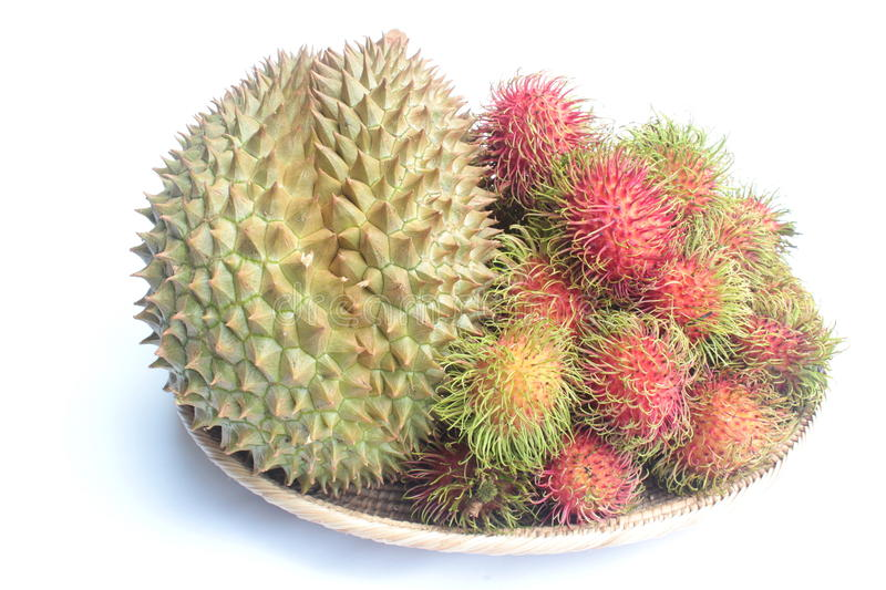 Download Durian And Rambutans On White Background Stock Photo - Image: 26015490