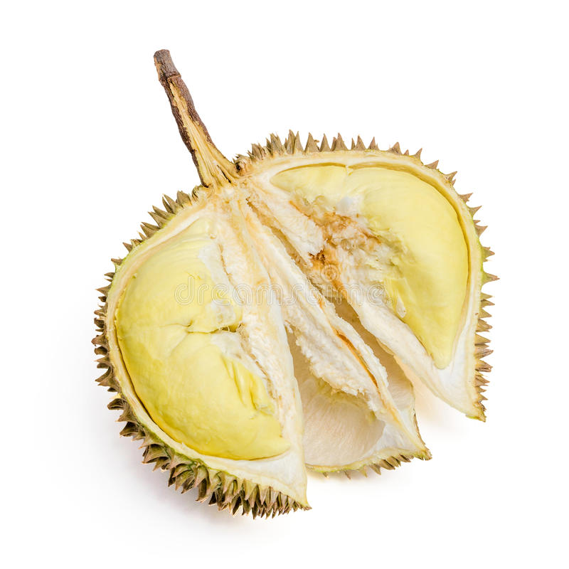 Durian. Riesige tropische Frucht. lizenzfreie stockbilder