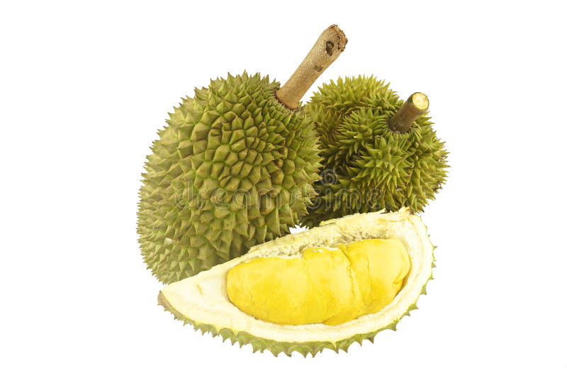Durian ripe and part isolated. Durian ripe and part with spikes isolated on white background stock photos