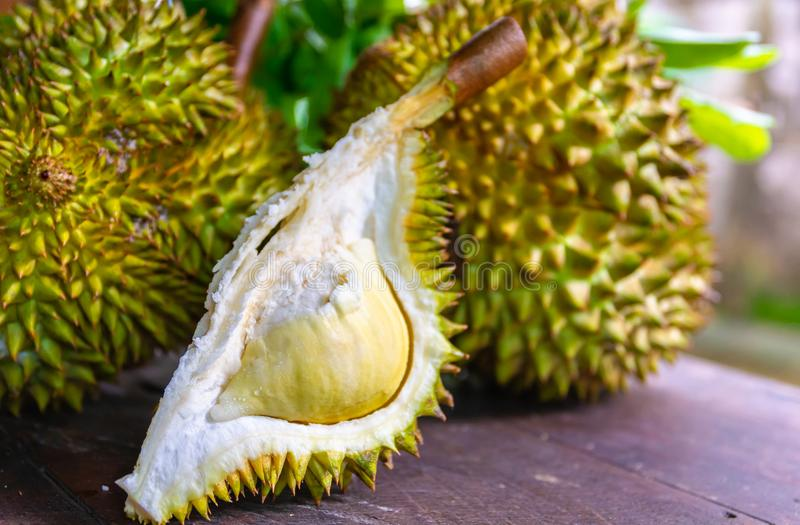 Durian riped and fresh ,durian peel with yellow colour on wooden stock photography