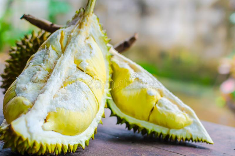 Durian riped and fresh ,durian peel with yellow colour on wooden royalty free stock photo