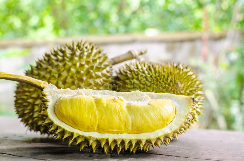 Durian riped and fresh ,durian peel with yellow colour on wooden stock photos