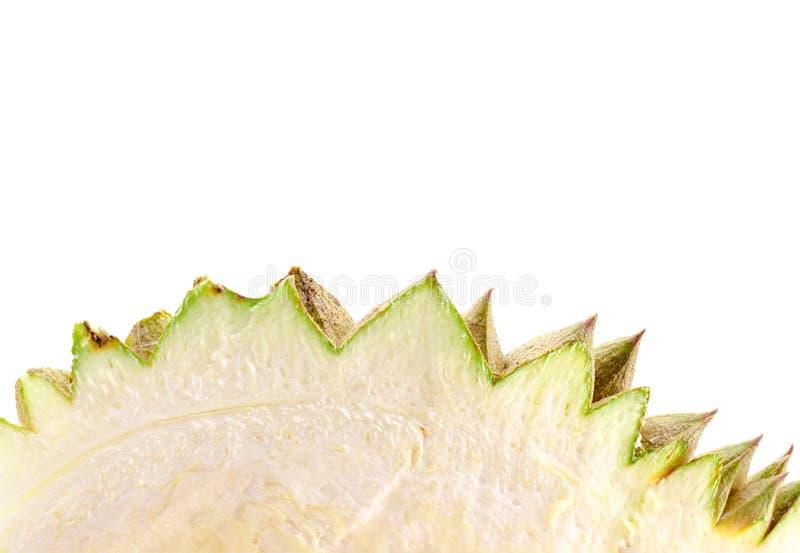 Durian-Schale auf weißem Hintergrund mit Beschneidungspfad stockfotos