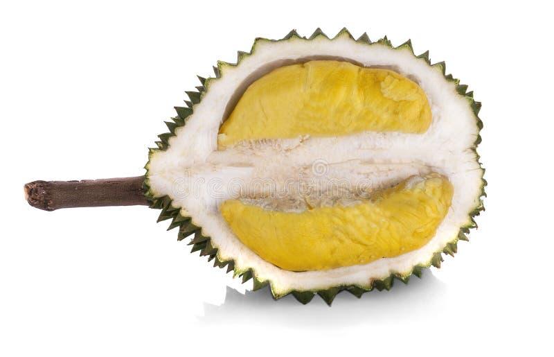 Durian som isoleras på vit bakgrund arkivbild