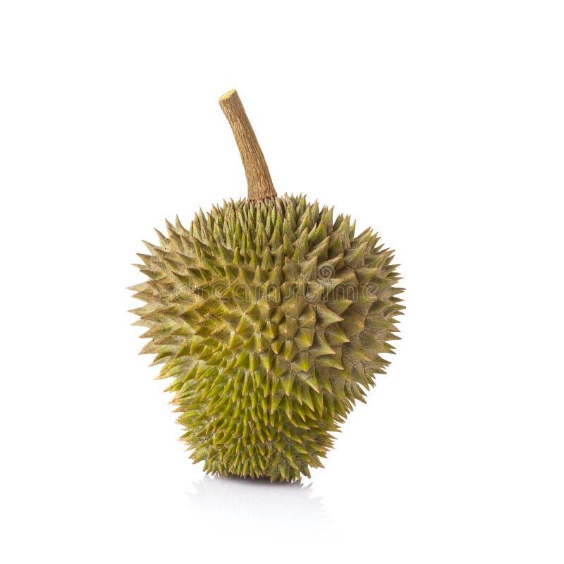 Download Durian Su Priorità Bassa Bianca Immagine Stock - Immagine di parte, nave: 56880039
